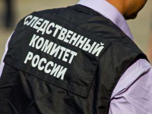 Вынесен приговор жителю Ставропольского края за участие в террористическом сообществе